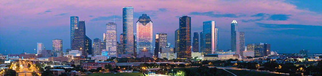 houston strippers skyline