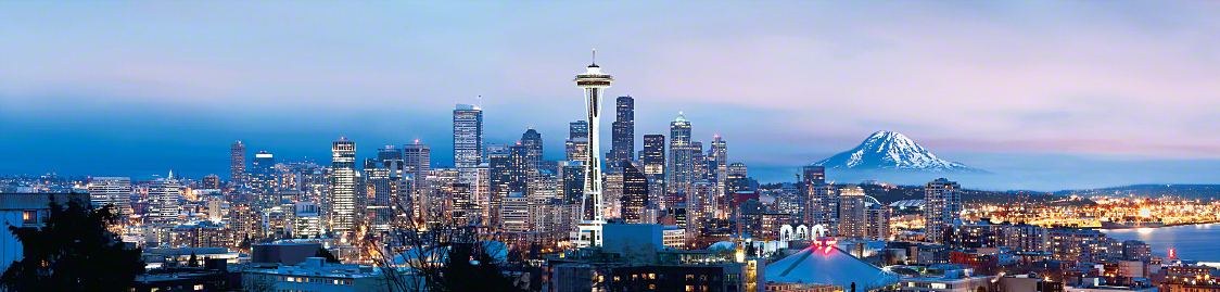 seattle strippers skyline